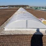 SF-Bau-Extensive Dachbegrünung-Neubau Produktionshalle und Verwaltungsbau-Pforzheim-Schlüsselfertigbau